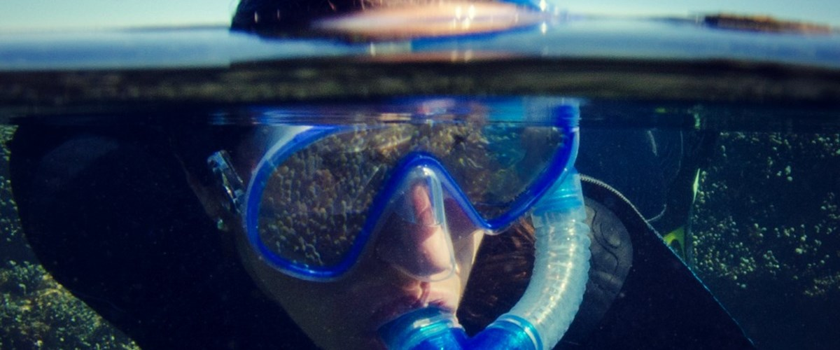 BYO Mask: Point Lonsdale Underwater