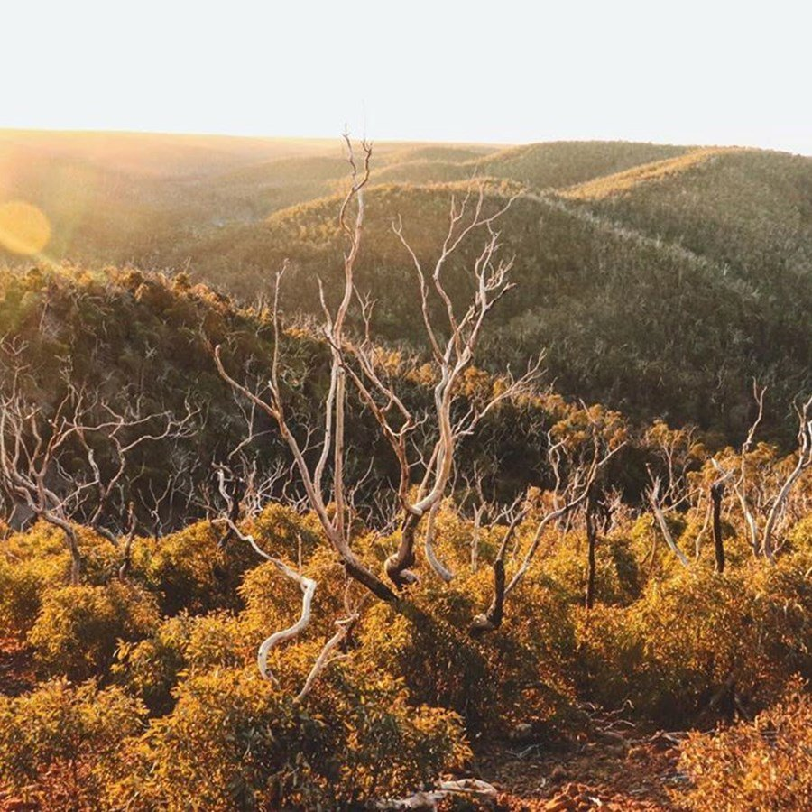 5 Instagram Hotspots in the Moorabool Valley