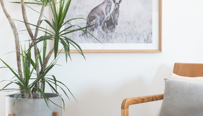Prints, furniture and plants can be found at Frankie Say Relax