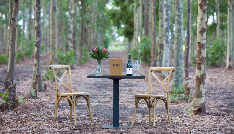 Wedding Ceremony Site amongst the gums  - Weddings at Merne at Lighthouse