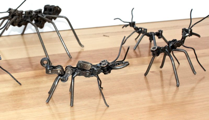 Signature Ants by H Doc Art