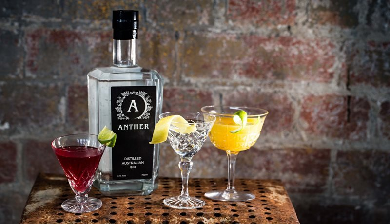 Anther Gin Martini's - enjoy seasonal cocktails at the Anther Distillery!