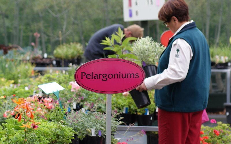 The Friends' Nursery open every Wednesday 9.30 am - 12.30 pm